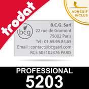 Empreinte pour Trodat Professional 5203