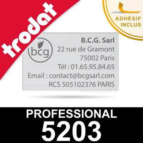 Empreinte Trodat Professional 5203