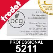 Empreinte Trodat Professional 5211